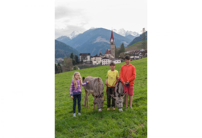 Kinder mit Esel auf der Wiese, vor St. Pankraz, Ultental